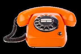Tel.: 09126 2914480  WIR NEHMEN IHRE BESTELLUNG GERNE TELEFONISCH ENTGEGEN.naturheilkunde-shop24.de