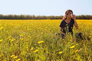 Pollenallergie, wenn Blütenstaub die Nase reizt