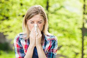 Erkältung oder Heuschnupfen – Wir zeigen Ihnen die Unterschiede