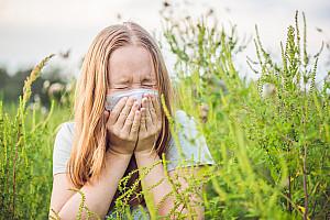 Heuschnupfen: Wenn Gräser und Pollen eine Allergie auslösen