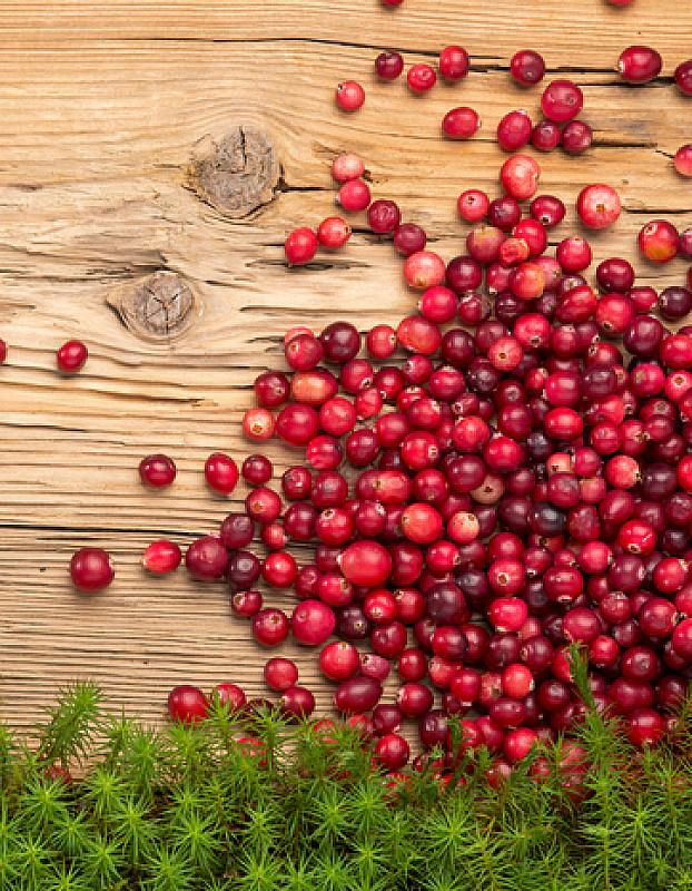 cranberries als natürliches heilmittel bei blasenproblemen