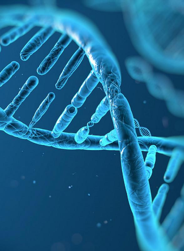 genetischer defekt