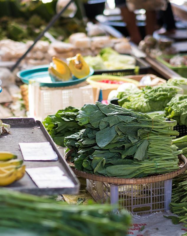 planzliche Lebensmittel vitamin a