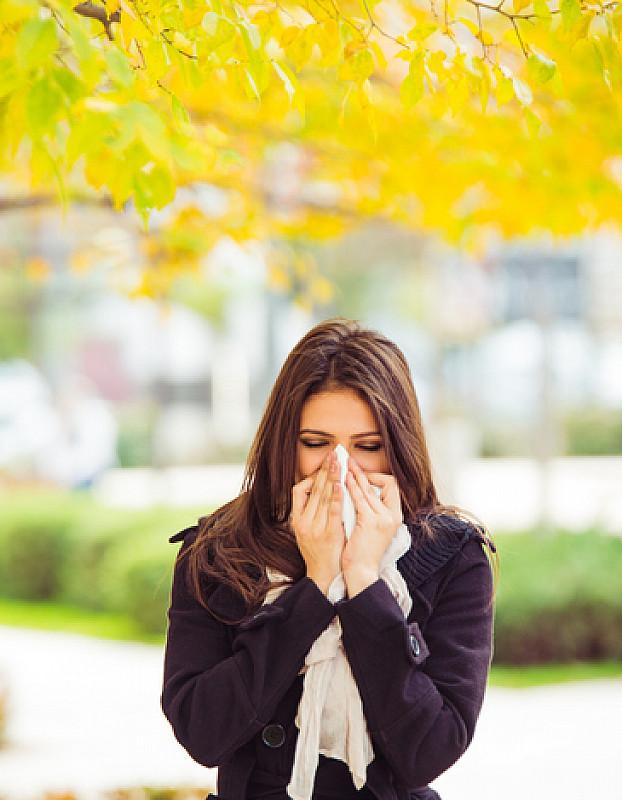 niesen als symptom einer Pollenallergie