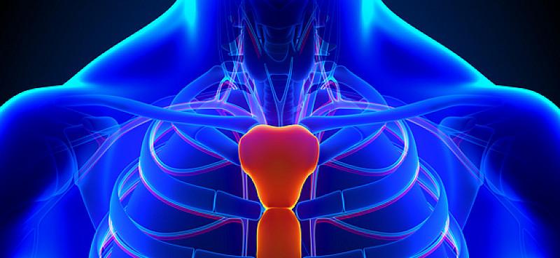 Brustbein-Schmerzen: Kann Symptom vieler Erkrankungen sein