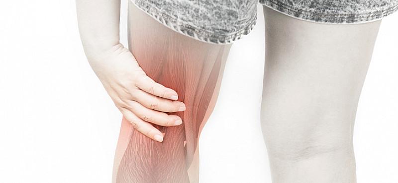 Schmerzen Kniekehle: Zerrungen, Meniskusriss, Thrombose