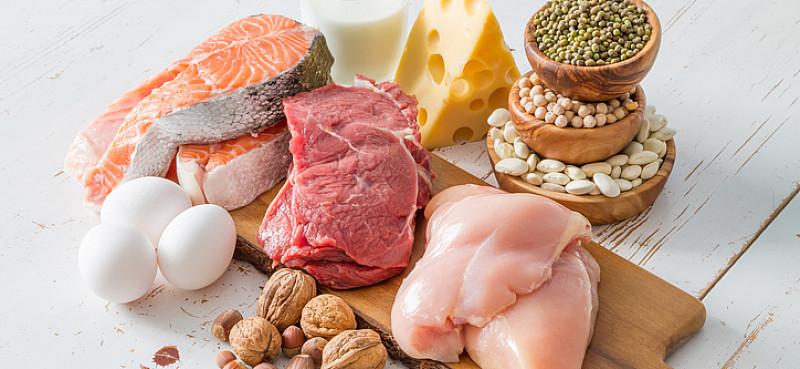 Lieferant für Vitamin B12