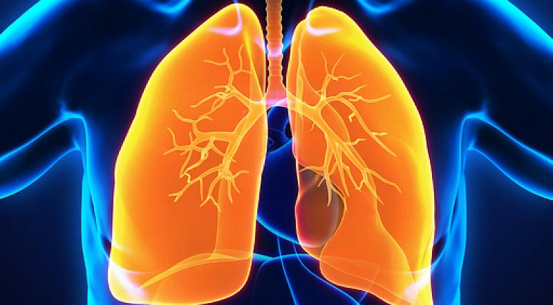 lungenschäden