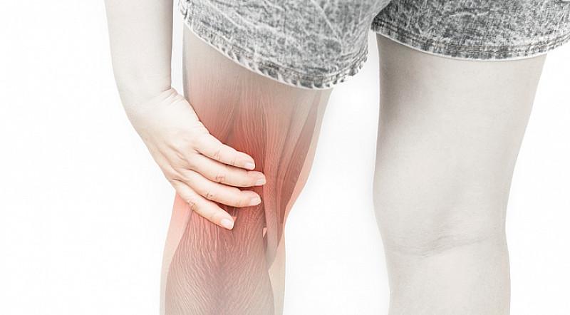 Beschwerden Knie / Kniekehle