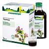 THYMIAN SCHOENENBERGER HEILPFLANZENSÄFTE, 3X200 ML, Salus Pharma GmbH