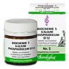 Biochemie 5 Kalium phosphoricum D 12, 80 Stück, Bombastus-Werke AG