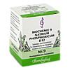 Biochemie 9 Natrium phosphoricum D 12, 80 Stück, Bombastus-Werke AG