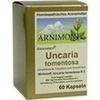 UNCARIA tomentosa Kapseln, 60 ST, ARNIMONT PHARMA GmbH