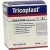 TRICOPLAST 2.5X6CM, 1 ST, Bsn Medical GmbH