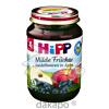 HIPP 4310 HEIDELBEER/APFEL, 190 G, Hipp GmbH & Co.Vertrieb KG
