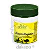 DarmReptin vet, 40 G, cdVet Naturprodukte GmbH