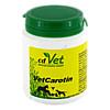 VetCarotin, 90 G, cd Vet Naturprodukte GmbH