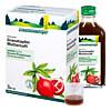 GRANATAPFEL-MUTTERSAFT SCHOENENB HEILPFLANZENSÄFTE, 3X200 ML, Salus Pharma GmbH