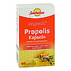 AAGAARD Propolis Kapseln, 60 Stück, Börner GmbH