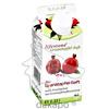 Granatapfel-Saft lifestone Bio Elopak, 0.33 L, Lifestone GmbH