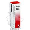 Rhodo-Gastreu R46, 22 ML, Dr.Reckeweg & Co. GmbH