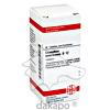 CEANOTHUS AMERICANUS D12, 80 ST, Dhu-Arzneimittel GmbH & Co. KG