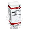 RHODODENDRON C 6, 10 G, Dhu-Arzneimittel GmbH & Co. KG