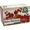 DR. KOTTAS Rotes Weinlaub mit Pfefferminze Fbtl., 20 ST, Hecht-Pharma GmbH