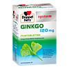 Doppelherz Ginkgo 120 mg system, 120 ST, Queisser Pharma GmbH & Co. KG