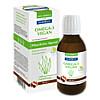 San Omega-3 Vegan, 100 ML, Jab Biopharma