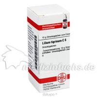 LILIUM TIGRINUM C 6, 10 G, Dhu-Arzneimittel GmbH & Co. KG