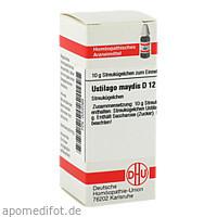 USTILAGO MAYDIS D12, 10 G, Dhu-Arzneimittel GmbH & Co. KG