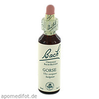 Bach-Blüte Gorse, 20 ML, Nelsons GmbH