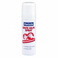 Kwizda Erste Hilfe Spray blutstillend, 40 G, Dr.Dagmar Lohmann Pharma + Medical GmbH