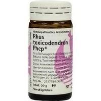 Rhus toxicodendron Phcp, 20 G, Phönix Laboratorium GmbH