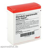 GLANDULA SUP SUIS INJ O, 10 ST, Biologische Heilmittel Heel GmbH