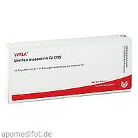 Urethra masculina Gl D15, 10X1 ML, Wala Heilmittel GmbH