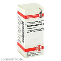 CISTUS CANADENSIS D12, 10 G, Dhu-Arzneimittel GmbH & Co. KG