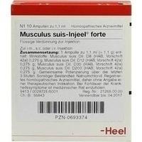 MUSCULUS SUIS INJ FO ORG, 10 ST, Biologische Heilmittel Heel GmbH