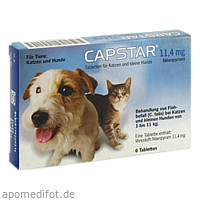 CAPSTAR 11,4 mg Tabletten f.Katzen/kleine Hunde, 6 ST, Elanco Deutschland GmbH