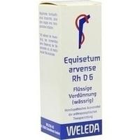 EQUISETUM ARV RH D 6, 20 ML, Weleda AG