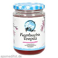 KOMBUCHA TEEPILZ, 1 ST, Hecht-Pharma GmbH