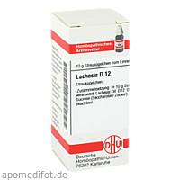 LACHESIS D12, 10 G, Dhu-Arzneimittel GmbH & Co. KG