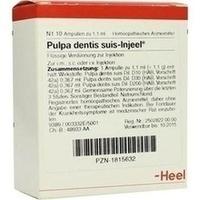 PULPA DENTI SUIS INJ ORG, 10 ST, Biologische Heilmittel Heel GmbH