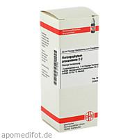HARPAGOPHYTUM PROCUMBENS D 2 Dilution, 50 ML, DHU-Arzneimittel GmbH & Co. KG