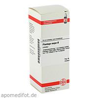 PLANTAGO MAJOR URT, 50 ML, Dhu-Arzneimittel GmbH & Co. KG