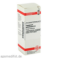 EUPATORIUM PERF D 6, 20 ML, Dhu-Arzneimittel GmbH & Co. KG