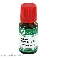ALLIUM CEPA ARCA LM 12, 10 ML, ARCANA Dr. Sewerin GmbH & Co. KG