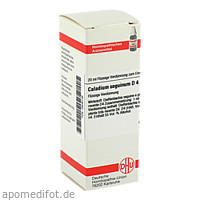 CALADIUM SEGUIN D 4, 20 ML, Dhu-Arzneimittel GmbH & Co. KG