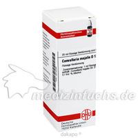 CONVALLARIA MAJAL D12, 20 ML, Dhu-Arzneimittel GmbH & Co. KG